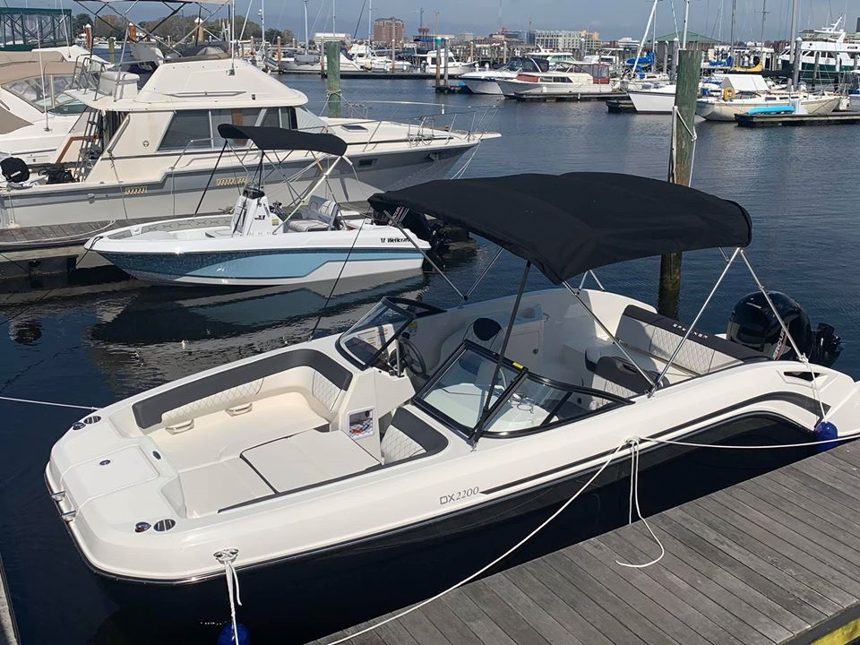 Bayliner DX220