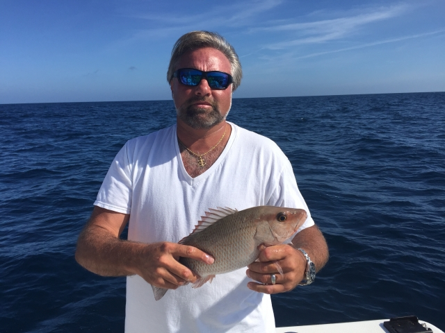 Mangrove Snapper will have you snapping into a decision to join Freedom Boat Club