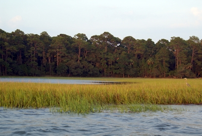 Miles of Backwater in Seabrook Island