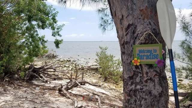 A deserted island in the middle of Tampa Bay!