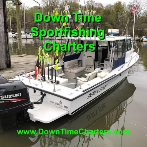 Downtime Sport Fishing Charters